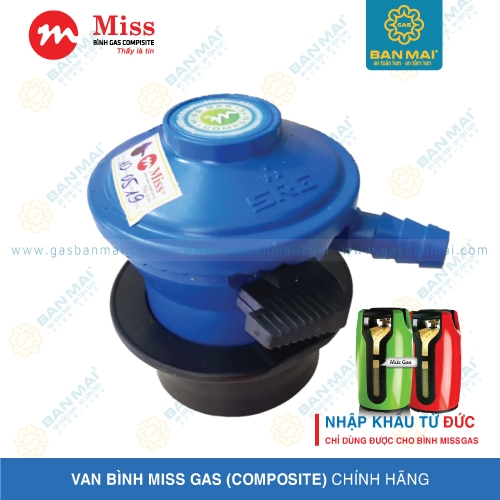 Van Gas Miss SRG-X13