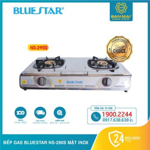 Bếp Bluestar NS-290S mặt inox