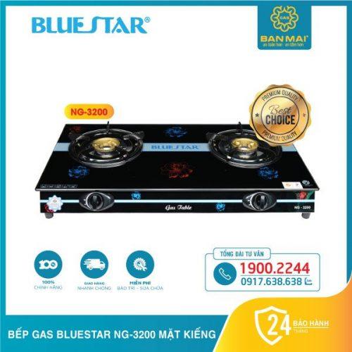 Bếp gas Bluestar NG-3200 chính hãng